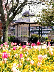 Dartmouth Bandstand in Spring
